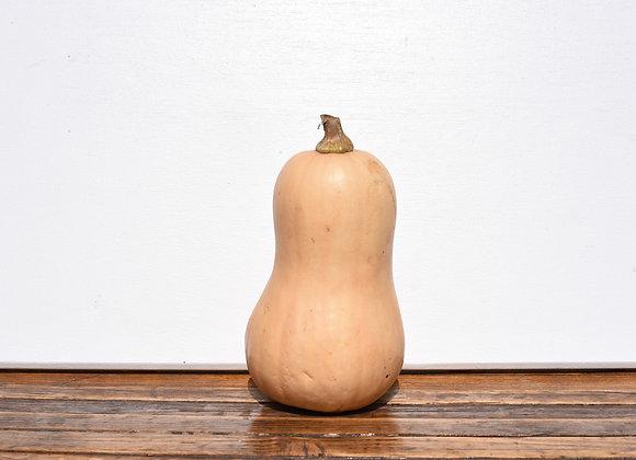 Organic Butternut Squash 1