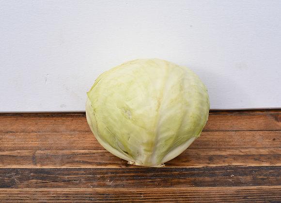 Organic Cabbage White