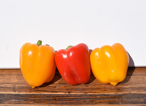 Organic Peppers Mixed 3