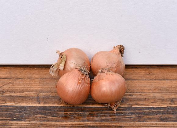 Organic brown Onions 4