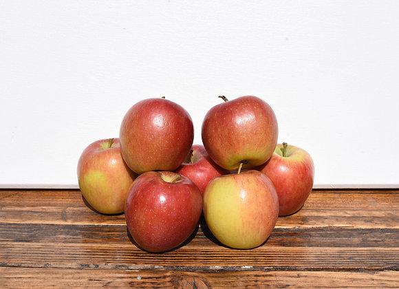Organic Apples Braeburn 7