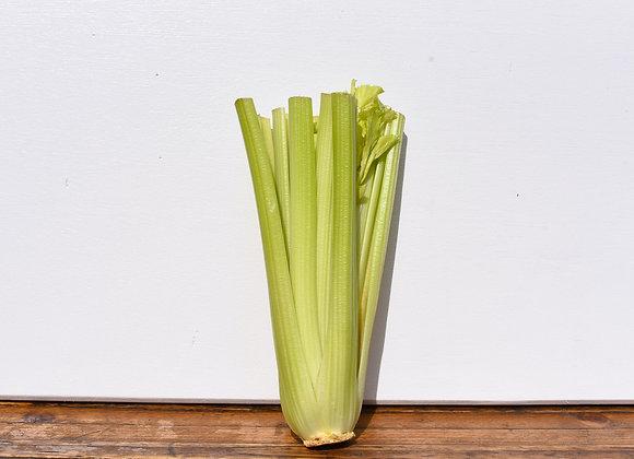 Organic Celery Whole
