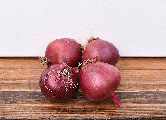 Organic Red Onions 4