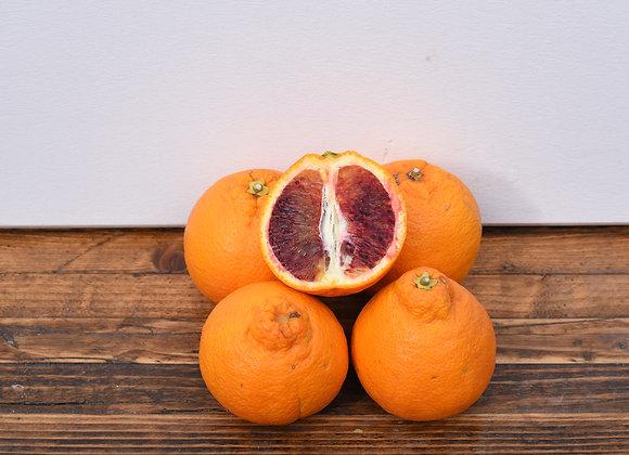Organic Blood Oranges 4