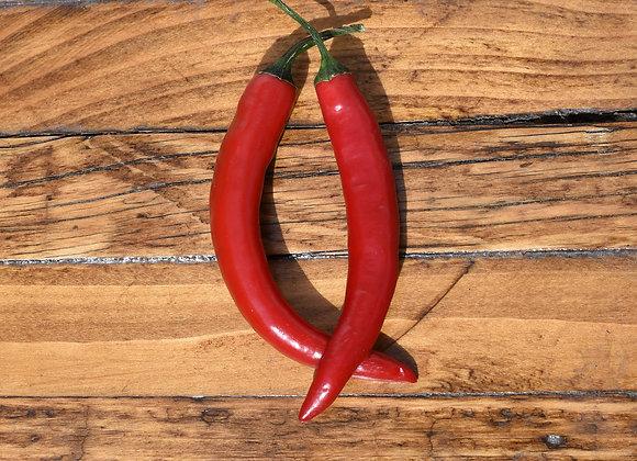 Organic Red Chillies 2