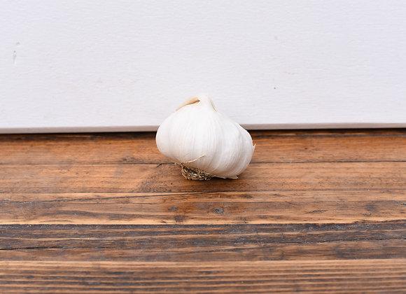 Organic Garlic 1