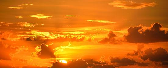sunest%20yellow%202_edited.jpg
