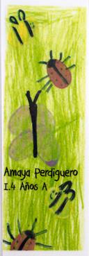 MARCAPAGINAS_4_AÑOS_A.jpg