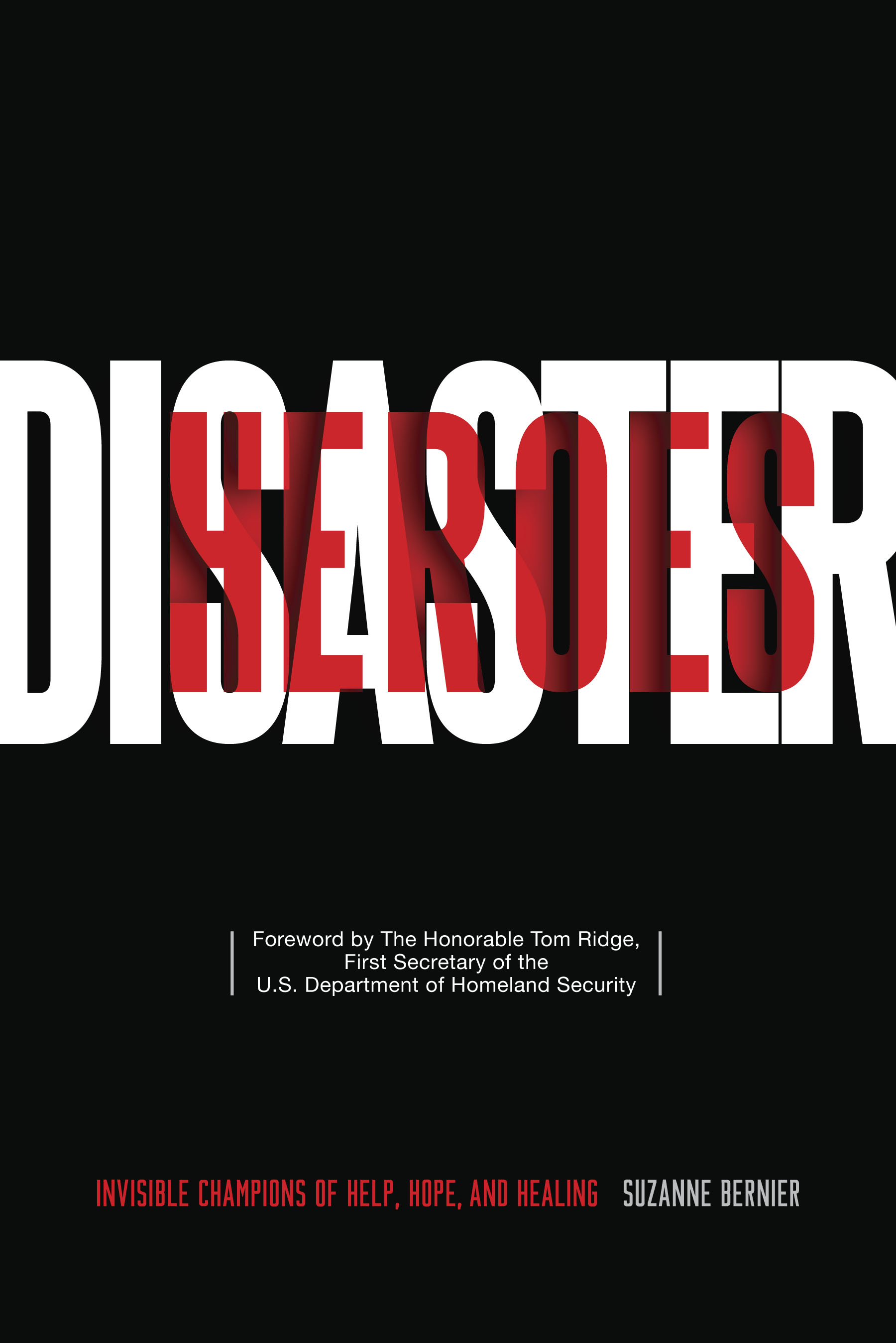 Disaster Heroes final book cover