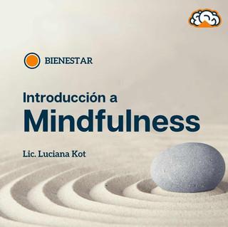 Mindfulness.Luciana Kot.jpg