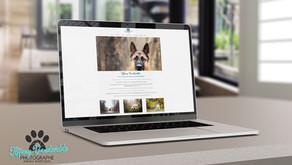 Création du site de Timilky Photographe d'animaux de compagnie