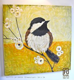 Vandut. Yellow_bird