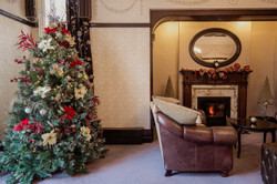 Christmas Tree in Lounge