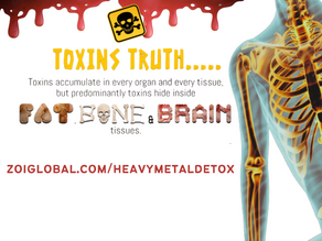Curious How Toxins Enter Your Body?