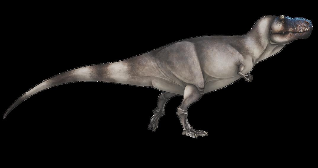Tyrannosaurus%20rex%20final%20draft_edit