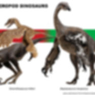pnas-2010-press-figure.jpg