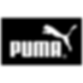 puma-2-logo-png-transparent.png