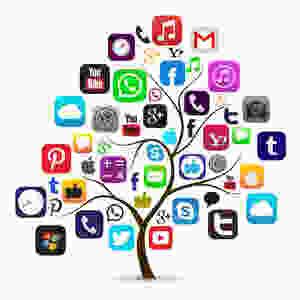 socialmedia tree