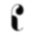 palam silks logo.png