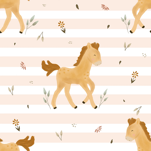 Conny mein Pony rose