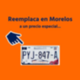 Gestomex - Reemplacamiento en Morelos (5