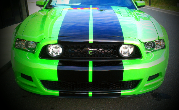 "Mustang ""Shelby Style GT 500"" Stripe"