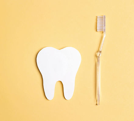 歯と歯ブラシ