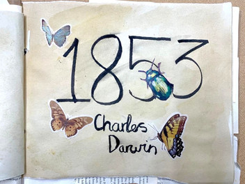 Scholarship Classes explore the work of Charles Darwin