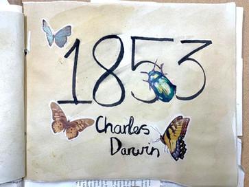 Scholarship Classes explore the work of Charles Darwin