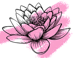 waterlily_edited.png