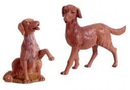 2 Perros 12 -52903