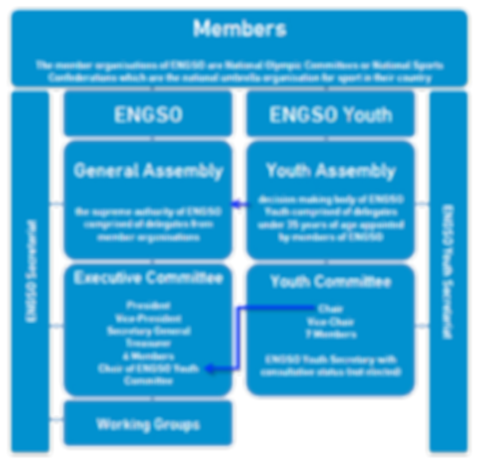 ENGSO Structural diagram