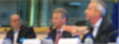 ENGSO EU Advisory Committee