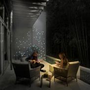 Digital Fireflies