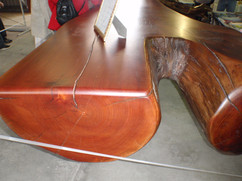 Red Cedar Stump 005.JPG