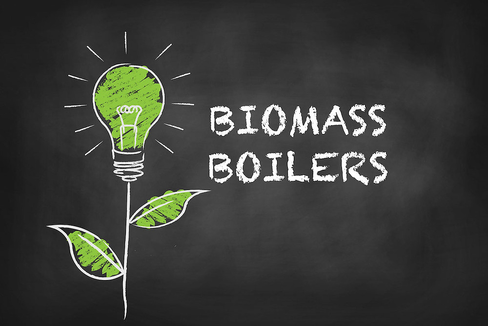Green shoot with lightbulb idea for Biomass Boilers from Hodgkinson Bennis