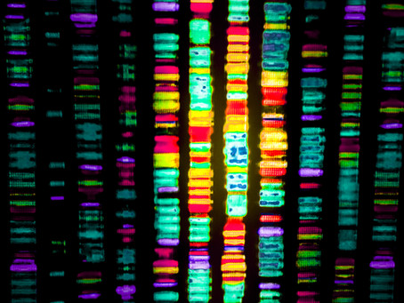 Germany mandates real-world data collection for gene therapy Zolgensma