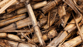 Biomass boilers and Non-Domestic Renewable Heat Incentive