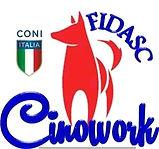 Fidasc-Cinowork 2.JPG