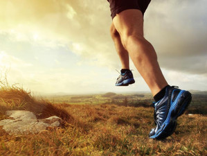 Endurance and the Job Hunt: 3 Tips to Stay the Course