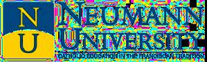 Neumann University Names New President