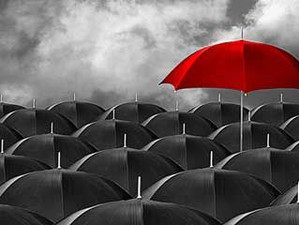 Stand out from the Crowd: Distinguishing Yourself in a Tight Job Market