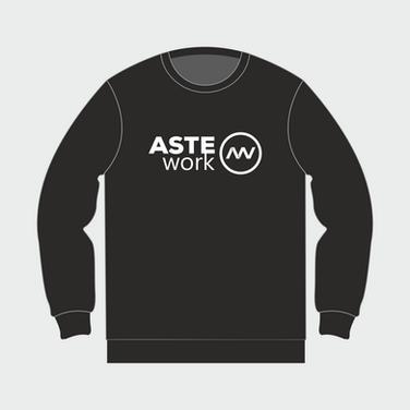 ASTE WORK 7.png