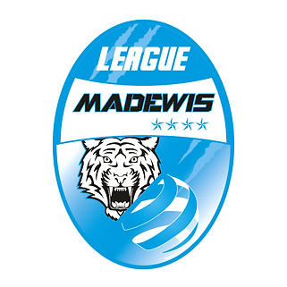MADEWIS CUP LEAGUE.png