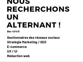Sport 2000 Ploërmel - NOUS RECHERCHONS UN ALTERNANT ! BAc +3/4/5