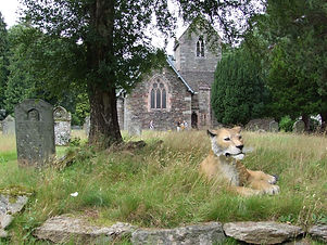 Rori the Lion in front of Patterdale Chu