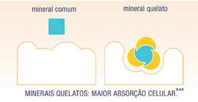 Aplicação de Fator de Correção em Minerais Quelatos