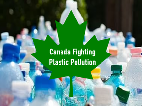 Canada Leading The Fight Against Plastic Pollution