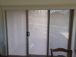 Squid window film