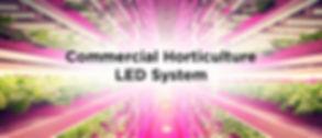 Commercial Horticulture Banner.jpg